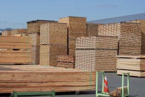 【激震】ウッドショック!木材価格高騰の理由