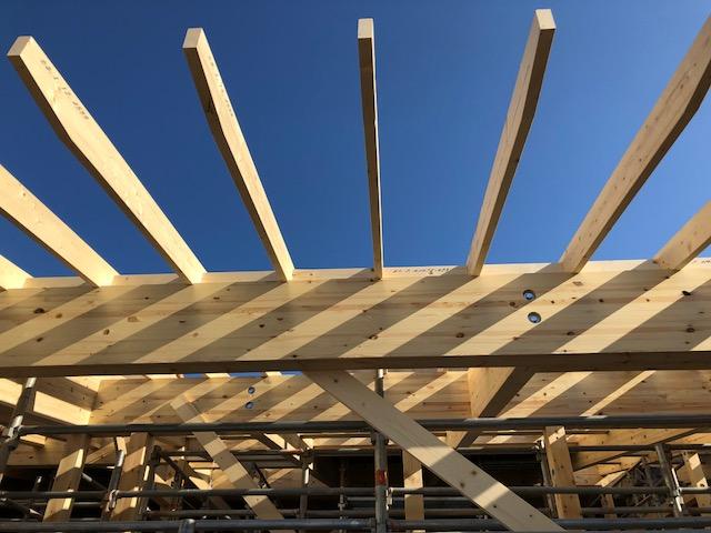SDGsや脱炭素社会、ESG投資の視点からも注目される大規模木造